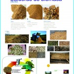 Beneficios de Calderas de Biomasa